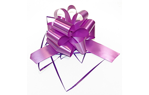 Accesorii pentru cadouri
